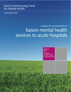 Guidance for commissioners of liaison mental health services to acute hospitals, Volume 2